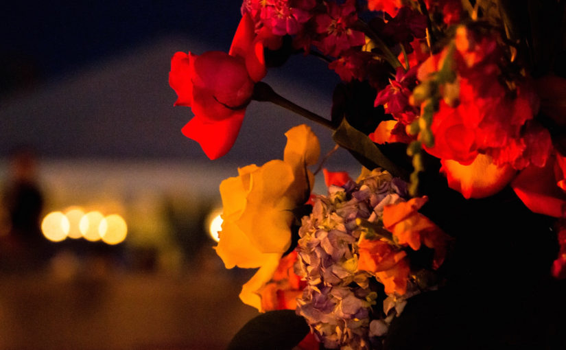 Flowers at WaterFire. Photography by Peter Xiong.